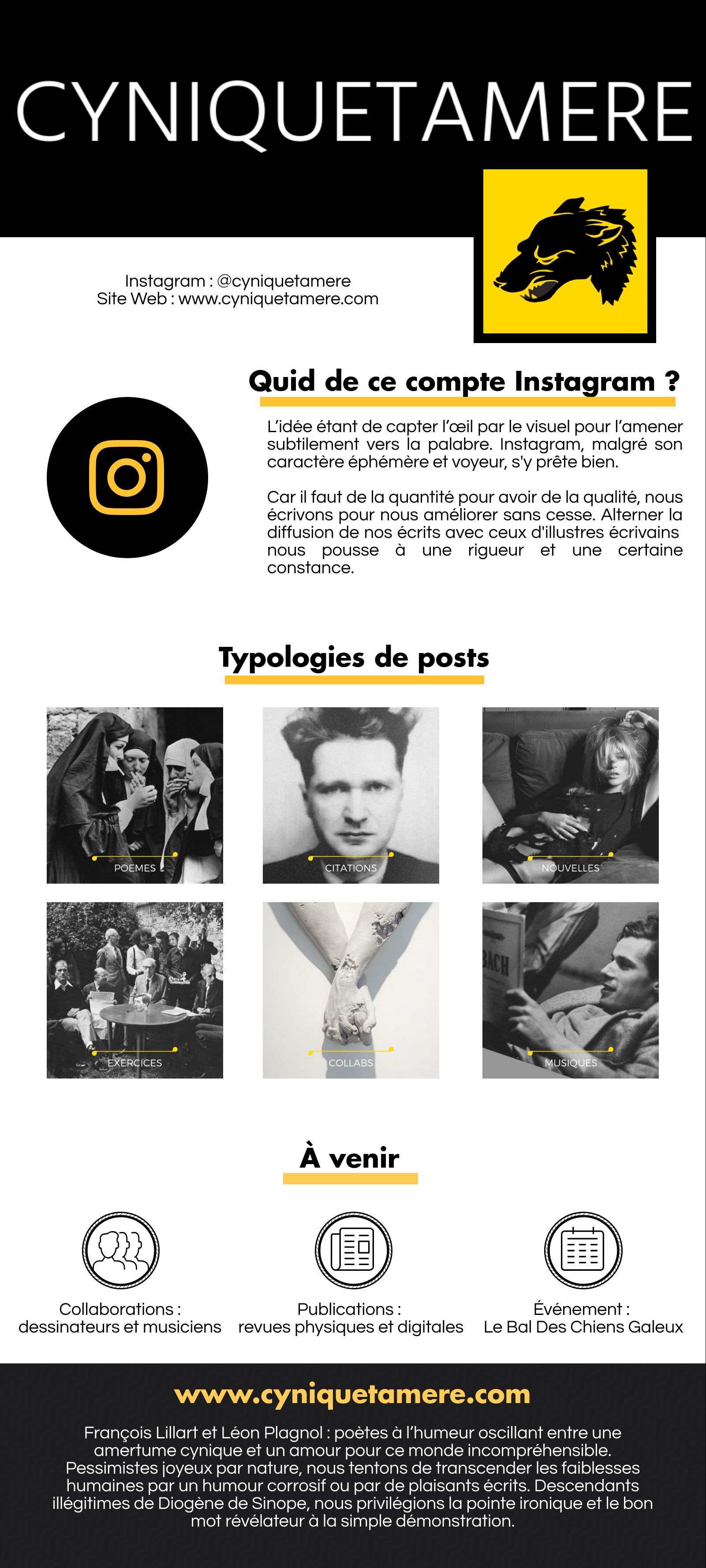 Infographie Instagram Cyniquetamere